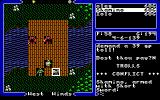 Ultima V: Warriors of Destiny DOS The trolls won't let you cross this bridge. Sorry, you've asked for that!