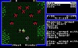 Ultima V: Warriors of Destiny DOS We are clearly outnumbered.