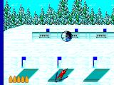 Winter Olympics: Lillehammer '94 SEGA Master System Biathlon. Try to shoot the targets