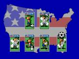 World Cup USA 94 SEGA Master System World Cup options