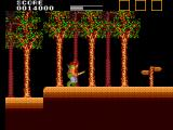 Lord of the Sword SEGA Master System Armed with your sword, you enter the dark forest...