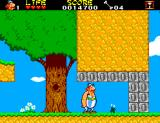 Astérix and the Secret Mission SEGA Master System The first of six plants our heroes have to collect is here.
