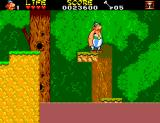 Astérix and the Secret Mission SEGA Master System Some platform riding.