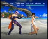 Dead or Alive: Ultimate Xbox Ayane sparring with Lei Fan.
