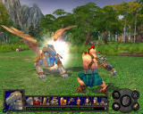 Heroes of Might and Magic V: Hammers of Fate Windows Royal Griffin vs. Brawler.