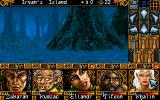 Ishar 2: Messengers of Doom DOS Now it's completely dark, and the forest begins to look scary