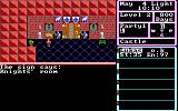 The Magic Candle: Volume 1 DOS Exploring the castle
