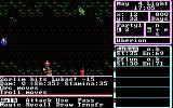 The Magic Candle: Volume 1 DOS You are attacked by various monsters