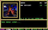 Neverwinter Nights DOS You are camping.