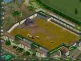 Zoo Tycoon Windows Lions. You have to be careful about what animals you put together!