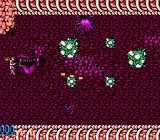 Legendary Wings NES Underworld blobs that split off into smaller blobs