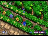 Sonic 3D Blast Windows That medal requires four flickies to be obtained