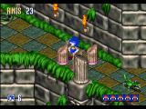 Sonic 3D Blast Windows As he spins like a ballerina, Sonic can destroy pillars and free flickies just by touching them