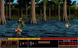 P.O.W. Amiga In the swamp.