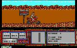 African Trail Simulator DOS Starting out (EGA)