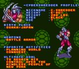 Teenage Mutant Ninja Turtles: Tournament Fighters SNES Character Profile