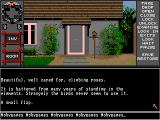 ...A Personal Nightmare Amiga Roses and birdhouse
