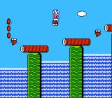 Super Mario Bros. 2 NES Toad rides a fish over a waterfall.