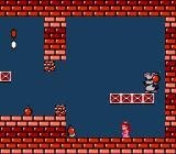 Super Mario Bros. 2 NES The bomb-throwing Mouser