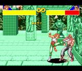 Power Instinct Genesis Fighting in a green mysteriously-looking room