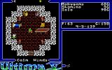 Ultima V: Warriors of Destiny Amiga Game start