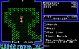 Ultima V: Warriors of Destiny Amiga A well