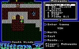 Ultima V: Warriors of Destiny Amiga Inventory
