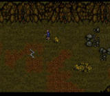 J.R.R. Tolkien's Lord of the Rings: Volume One SNES Fighting snakes outside of Hobbiton