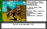 Dragon Wars Amiga Big Dog