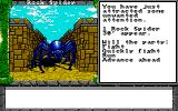 Dragon Wars Amiga Rock spider