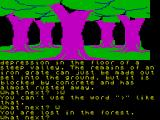 Jewels of Darkness ZX Spectrum Early in Adventure Quest
