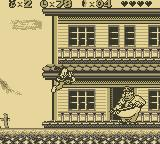 Animaniacs Game Boy Western Set