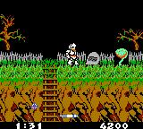 Ghosts 'N Goblins Game Boy Color These plants spit fireballs at you