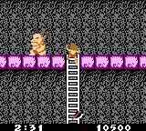 Ghosts 'N Goblins Game Boy Color There are loads of ladders to climb in this level