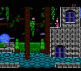 Castle of Deceit NES Use doorways to move up or down levels.