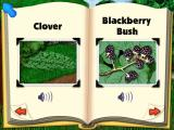Blue's Clues: Blue Takes You to School Windows Some of the snapshots you can take...