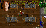 Ultima Collection DOS Serpent Isle - Game - Doing some chatting