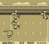 Tiny Toon Adventures: Wacky Sports Game Boy Football