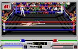 4-D Boxing Amiga Back to the fight and he isn't getting up this time