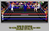 4-D Boxing Amiga The winner is announced