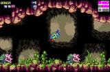 Metroid Fusion Game Boy Advance These enemies can only be damaged from behind.