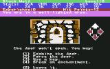 Alternate Reality: The Dungeon Commodore 64 Came across a locked door