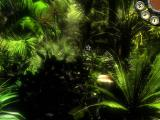 AGON: Episode 3 - Pirates of Madagascar Windows You can get lost in this jungle easily. Listen to the calls of the little creature.
