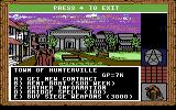 King's Bounty Commodore 64 Town options