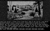 Gnome Ranger DOS Game start (Monochrome)