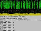 Robin of Sherwood: The Touchstones of Rhiannon ZX Spectrum Bit of a maze here