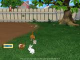 Catz 5 Windows Back home, playing with a rabbit in the back yard.