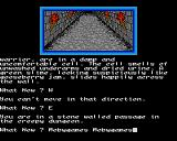 Dungeons, Amethysts, Alchemists 'n' Everythin' Amiga Passage