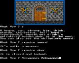 Dungeons, Amethysts, Alchemists 'n' Everythin' Amiga Locked door