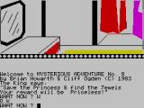 The Wizard of Akyrz ZX Spectrum What's in the closet?